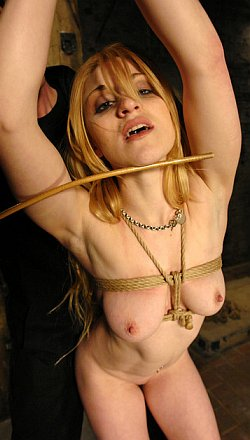 slavegirl Tawni Ryden caned in training