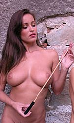 rattan cane for sex slave spankings